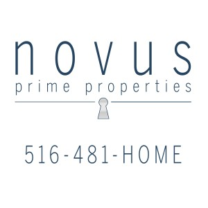 Logo for novus